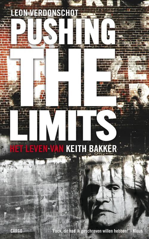 Pushing the limits (Ebook)