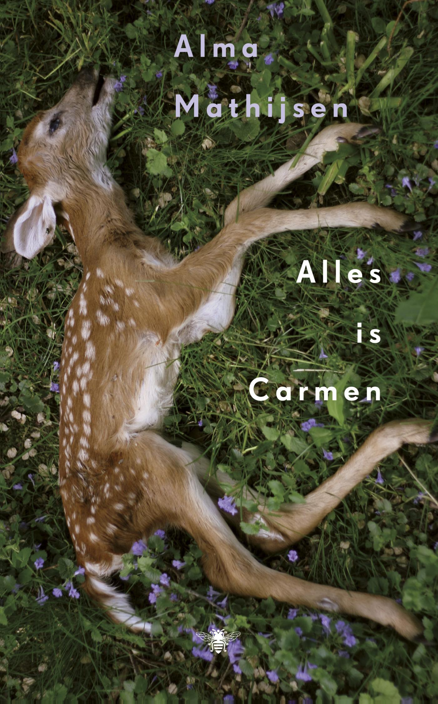 Alles is Carmen (Ebook)
