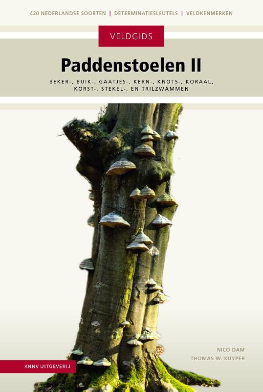 Paddenstoelen II